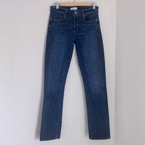 LOFT Modern Straight Denim Jeans